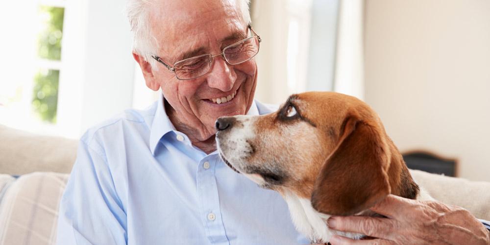 dog and senior man