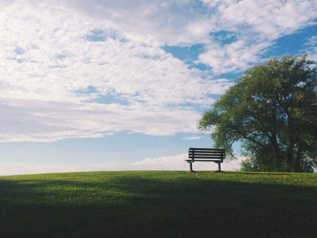bench in field
